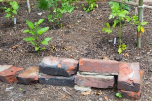 new life for old bricks